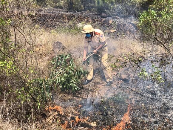 Dập tắt vụ cháy rừng thông ở Quảng Nam ảnh 2