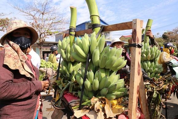 Chợ chuối mật mốc vùng biên lớn nhất miền Trung nhộn nhịp dịp cuối năm ảnh 2