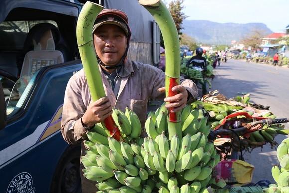 Chợ chuối mật mốc vùng biên lớn nhất miền Trung nhộn nhịp dịp cuối năm ảnh 4