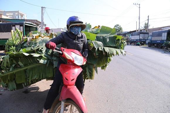 Chợ chuối mật mốc vùng biên lớn nhất miền Trung nhộn nhịp dịp cuối năm ảnh 7