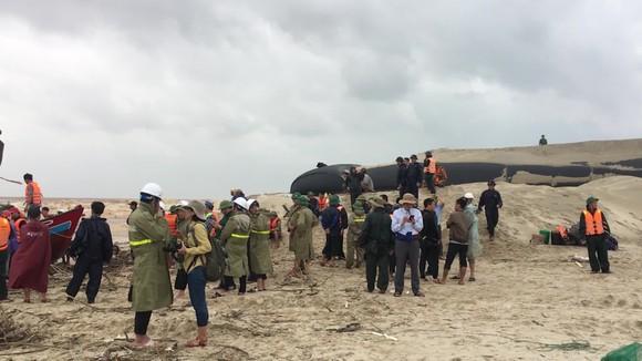 Tàu cá ngư dân bị sóng đánh chìm khi đang cứu nạn tàu Vietship 01 ảnh 2