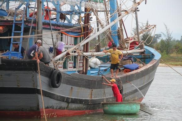 Đà Nẵng, Thừa Thiên-Huế yêu cầu người dân không ra khỏi nhà bắt đầu từ trưa 14-11 ảnh 4