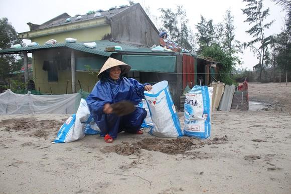 Di dời dân, chằng chống nhà cửa trước cơn bão số 13  ảnh 3