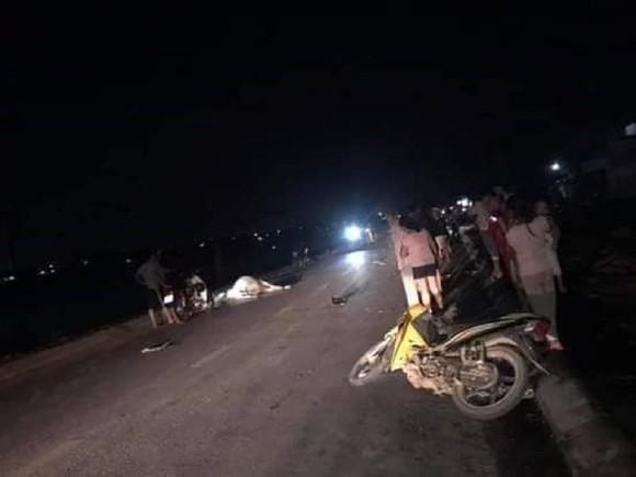 Xe máy tông bò thả rông trên quốc lộ, 2 người thương vong ảnh 1