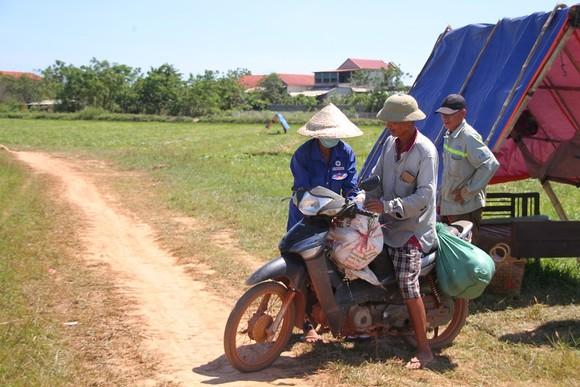 Trồng dưa hấu trên đất lúa mùa khô hạn cho thu nhập cao ảnh 6