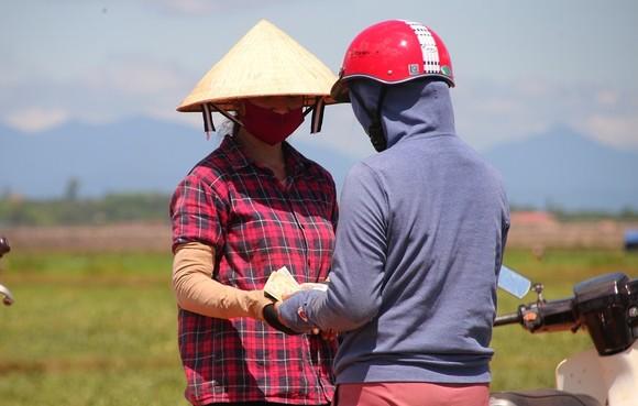 Trồng dưa hấu trên đất lúa mùa khô hạn cho thu nhập cao ảnh 7