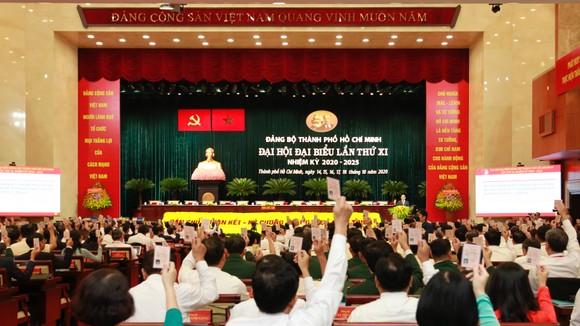 Đại hội đại biểu Đảng bộ TPHCM lần thứ XI họp phiên trù bị ảnh 1