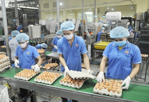 Tăng liên kết phát triển sản xuất và hạ tầng thương mại ảnh 1