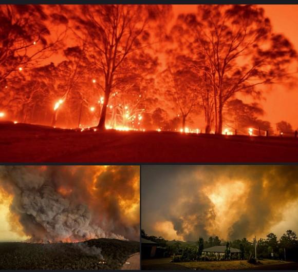 Australia 'oằn lưng' chống chọi thảm họa cháy rừng ảnh 12
