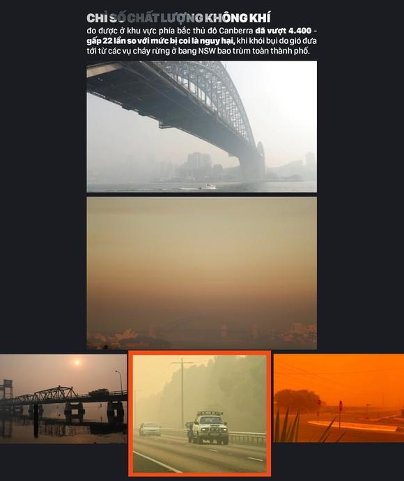 Australia 'oằn lưng' chống chọi thảm họa cháy rừng ảnh 15