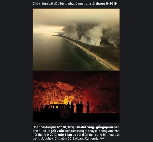 Australia 'oằn lưng' chống chọi thảm họa cháy rừng ảnh 2