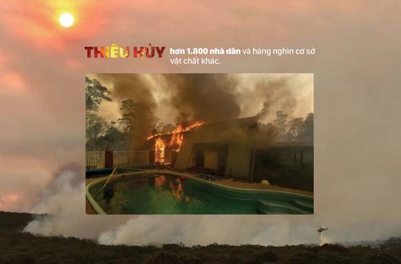 Australia 'oằn lưng' chống chọi thảm họa cháy rừng ảnh 6