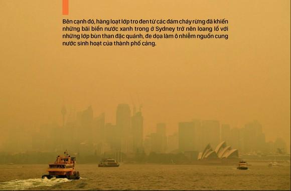 Australia 'oằn lưng' chống chọi thảm họa cháy rừng ảnh 10