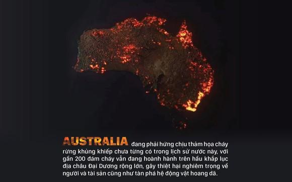 Australia 'oằn lưng' chống chọi thảm họa cháy rừng ảnh 1