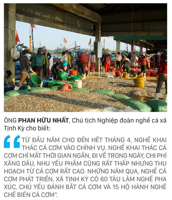 Ngư dân Quảng Ngãi trúng đậm cá cơm ảnh 12
