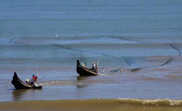 Ngư dân lội bộ ven bờ bắt hàng tạ ruốc biển ảnh 2