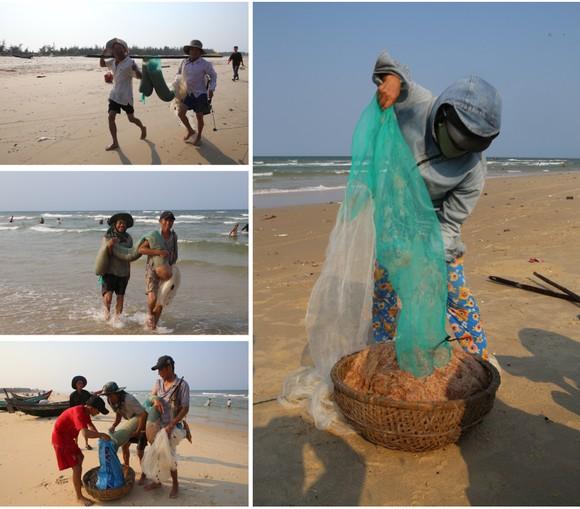 Ngư dân lội bộ ven bờ bắt hàng tạ ruốc biển ảnh 8