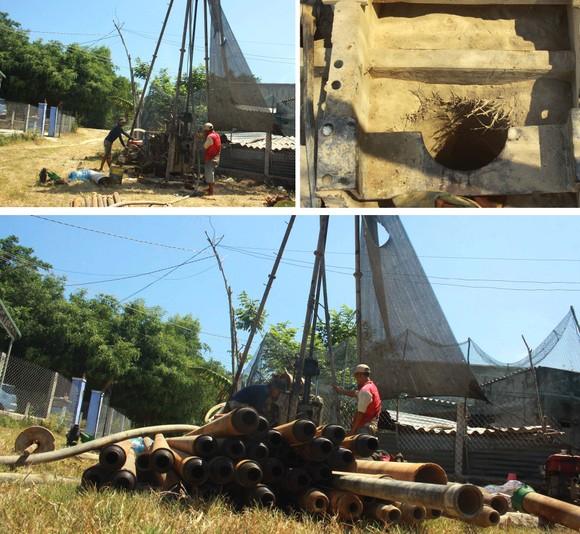 Quảng Ngãi: Khô cháy đồng, dân xách thùng mua từng giọt nước ảnh 7