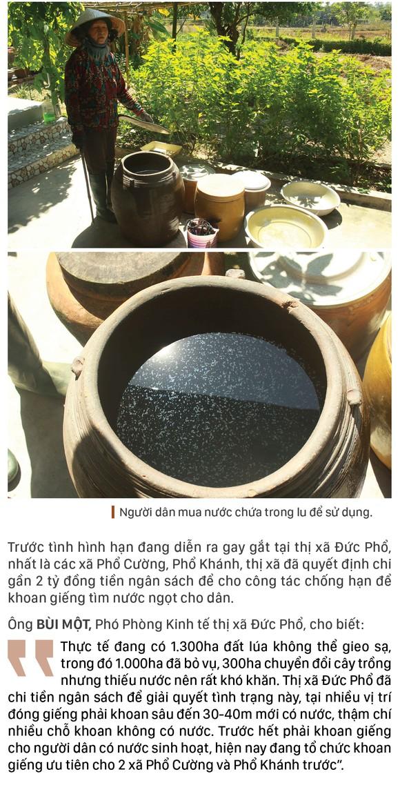 Quảng Ngãi: Khô cháy đồng, dân xách thùng mua từng giọt nước ảnh 10