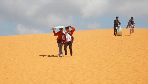 Mũi Né được công nhận là Khu du lịch quốc gia ảnh 17