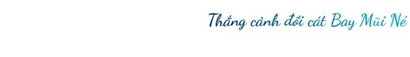 Mũi Né được công nhận là Khu du lịch quốc gia ảnh 18