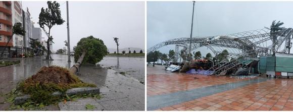 Những cơn bão lớn đổ bộ Việt Nam trong 20 năm qua ảnh 3