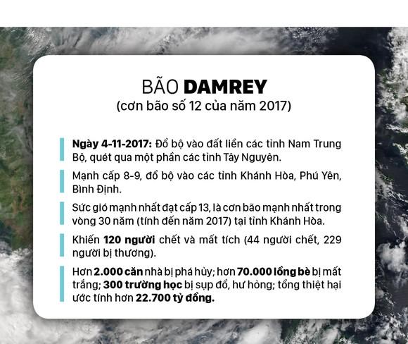 Những cơn bão lớn đổ bộ Việt Nam trong 20 năm qua ảnh 5