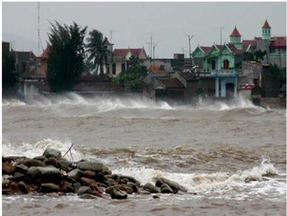 Những cơn bão lớn đổ bộ Việt Nam trong 20 năm qua ảnh 19