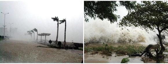 Những cơn bão lớn đổ bộ Việt Nam trong 20 năm qua ảnh 21