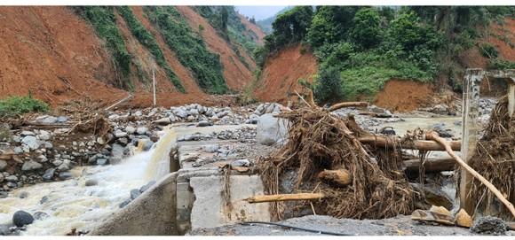 Phước Lộc tan hoang sau bão ảnh 9