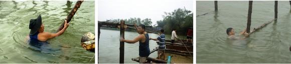 Cả làng cùng dựng cầu đón tết ảnh 17