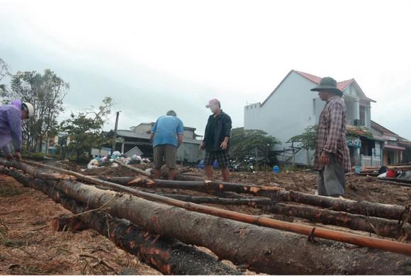 Cả làng cùng dựng cầu đón tết ảnh 5