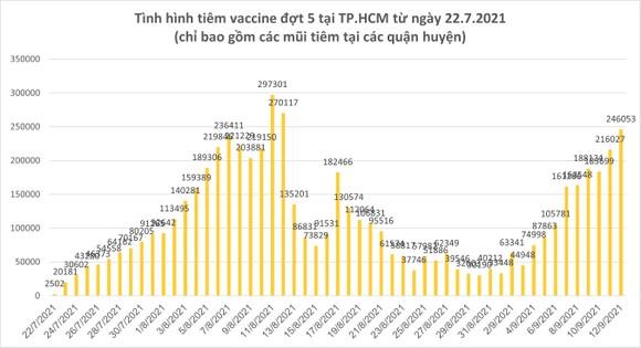 Số ca tử vong do Covid-19 tại TPHCM trên đà giảm ảnh 7