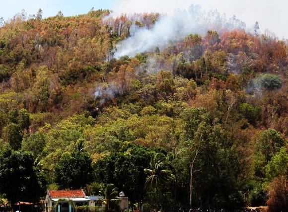 Lửa bao vây núi Đá Tợ, kèm theo tiếng lựu đạn nổ ảnh 3