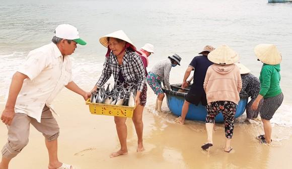 Biển gần bờ xuất hiện nhiều đàn cá, ngư dân Bình Định trúng lớn ảnh 5