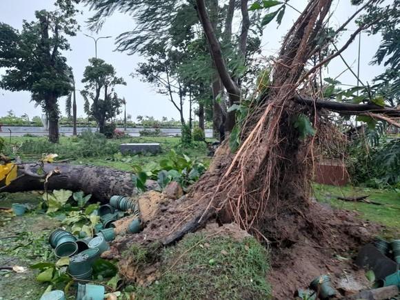 Mưa lớn, gió gào rú dữ dội tại các tỉnh miền Trung ảnh 14