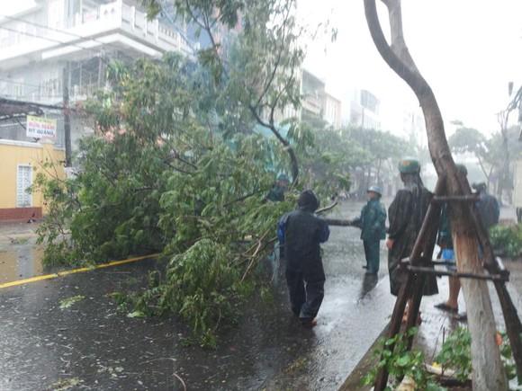 Mưa lớn, gió gào rú dữ dội tại các tỉnh miền Trung ảnh 7