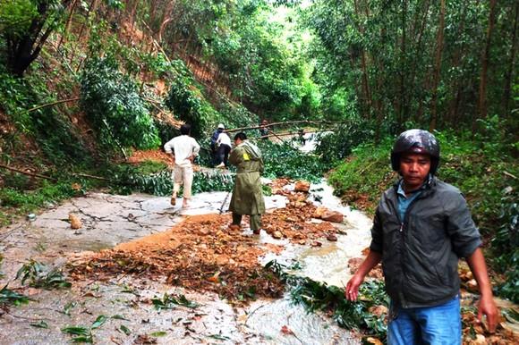 Bình Định báo cáo sự cố sạt lở tại Thủy điện Vĩnh Sơn 5 ảnh 10