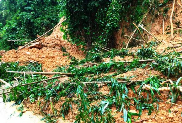 Bình Định báo cáo sự cố sạt lở tại Thủy điện Vĩnh Sơn 5 ảnh 11