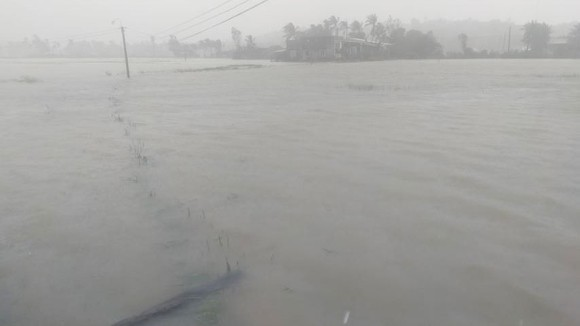 Những thiệt hại ban đầu của cơn bão số 12 ảnh 19