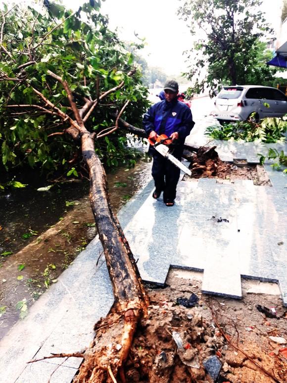 Những thiệt hại ban đầu của cơn bão số 12 ảnh 22