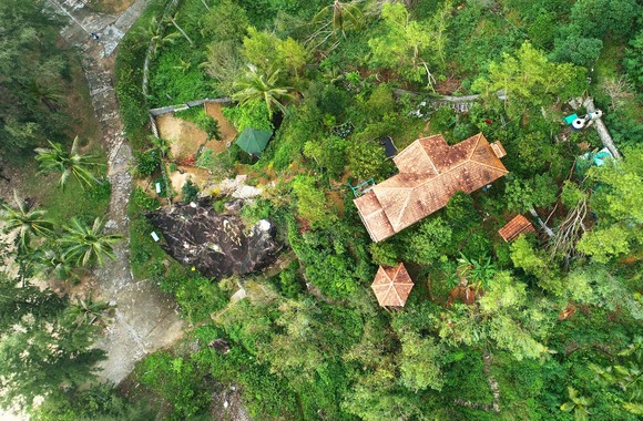 Nguyên Chủ tịch Ủy ban MTTQ tỉnh Bình Định bị phạt 4 triệu đồng vì chuyển đổi đất rừng trái phép ảnh 1