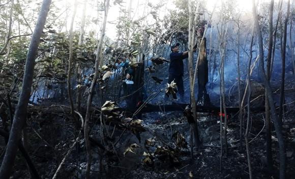 Vật vã khống chế đám cháy trên núi Bà Hỏa ảnh 5
