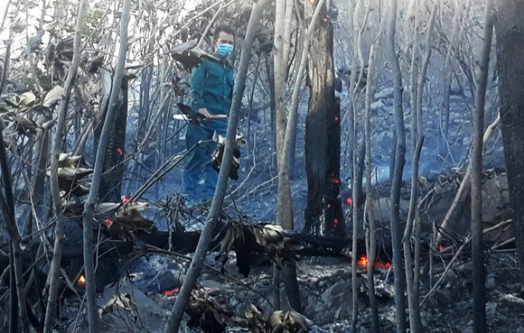 Vật vã khống chế đám cháy trên núi Bà Hỏa ảnh 3