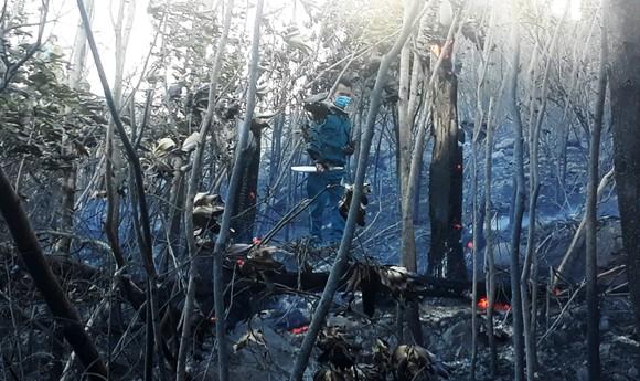 Vật vã khống chế đám cháy trên núi Bà Hỏa ảnh 6
