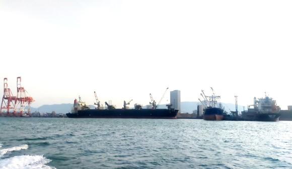 Phát hiện 7 thuyền viên từ Indonesia vào cảng Quy Nhơn nghi mắc Covid-19 ảnh 1