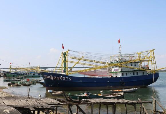 """Ngư dân Quảng Nam """"quay lưng"""" Nghị định 17 ảnh 2"""