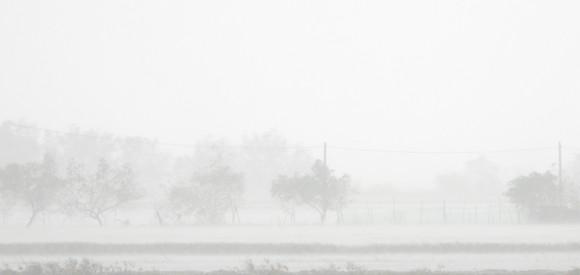 Quảng Bình mưa trắng trời, Huế cây cối ngã đổ ảnh 12