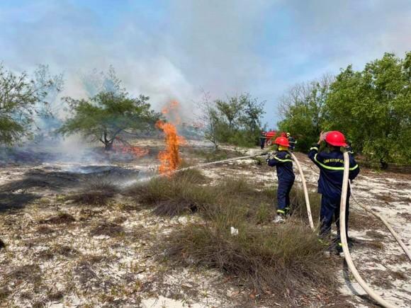 Quảng Bình: Cháy rừng phòng hộ ven biển trong nhiều giờ ảnh 1