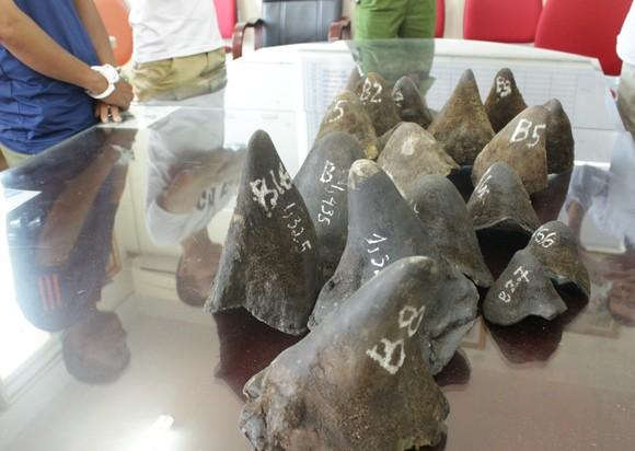 Việt Nam xử lý nghiêm đối với tội phạm buôn bán sừng tê giác ảnh 1